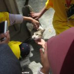 Festival Outreach: Seri Tioman 1 (Part III)